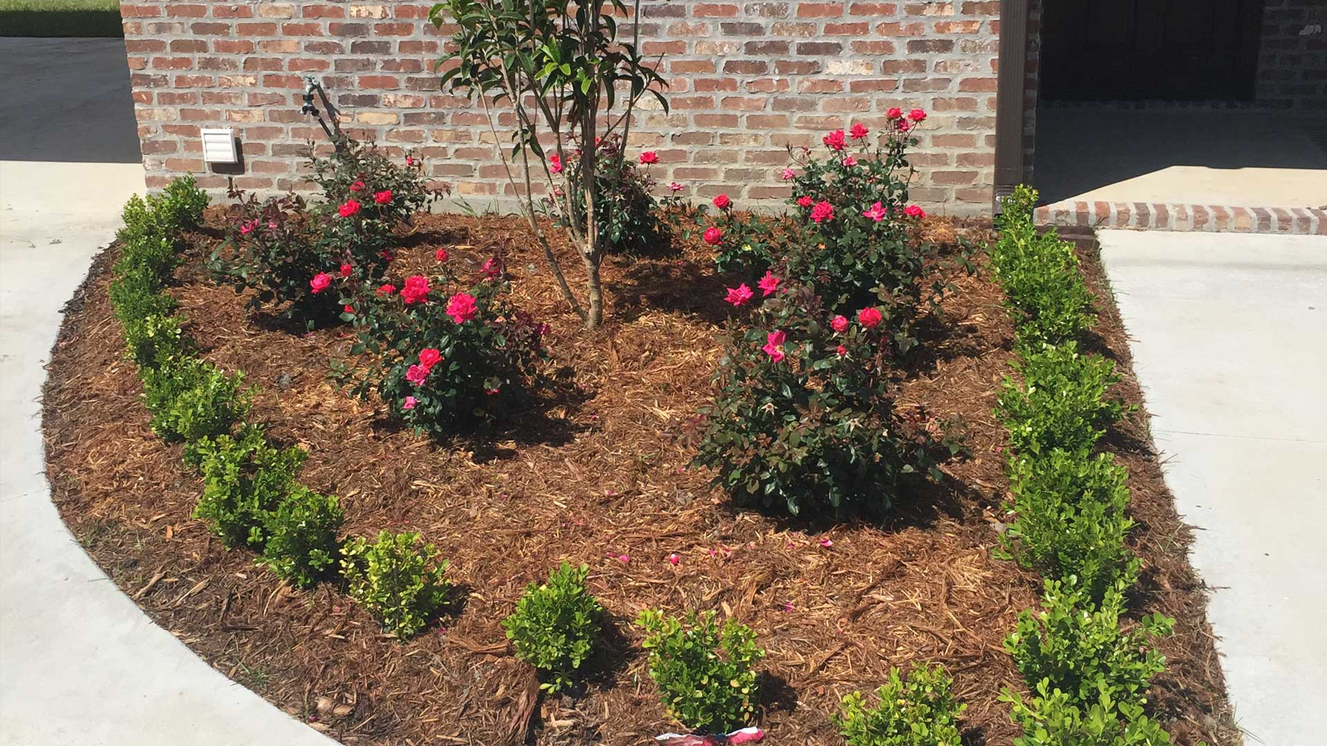 New landscaping with flowers, shrubs, and mulch in front of an Houma home.