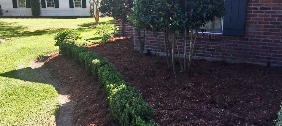 Spring yard cleanup services including landscape trimming and new mulch at a home in Raceland, LA