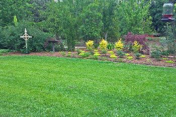 Thibodaux home with beautiful green grass that was achieved through our lawn care services.